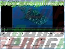 برنامج التعديل على الفيديو