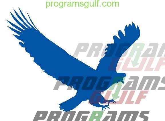 تحميل برنامج ايجل جيت Eagleget Download